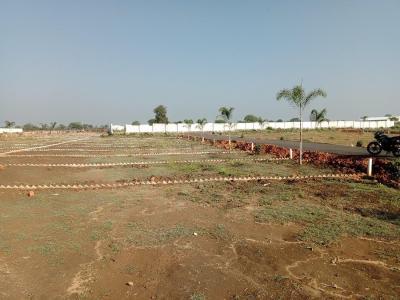 800 Sq.ft Residential Plot for Sale in Dhanwantary Nagar, Jabalpur