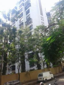 Gallery Cover Image of 1050 Sq.ft 2 BHK Apartment for rent in Sanpada for 45000