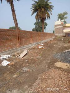 Gallery Cover Image of 1000 Sq.ft Residential Plot for buy in Gram Baroli for 1199000