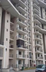 Gallery Cover Image of 1120 Sq.ft 2 BHK Apartment for rent in Sector 62 for 17000