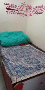Gallery Cover Image of 600 Sq.ft 1 BHK Apartment for rent in Sector 70 for 13000