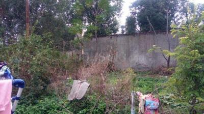 1350 Sq.ft Residential Plot for Sale in Khanpur, Pathankot