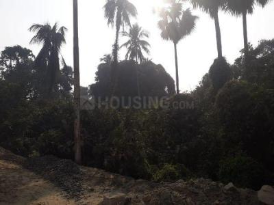 14400 Sq.ft Residential Plot for Sale in Ramnagar, पूर्बा मेदिनीपुर