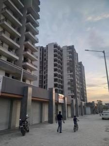 Gallery Cover Image of 750 Sq.ft 3 BHK Apartment for rent in Amolik Heights, Sector 88 for 11000