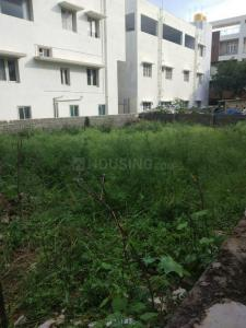 2400 Sq.ft Residential Plot for Sale in Sahakara Nagar, बैंग्लोर
