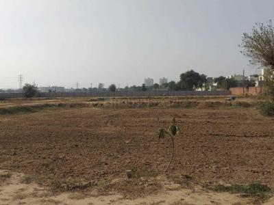 Gallery Cover Image of  Sq.ft Residential Plot for buy in  for 4800000