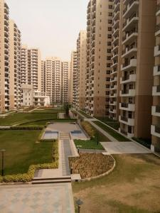 Gallery Cover Image of 1350 Sq.ft 3 BHK Apartment for buy in Yeida for 3899999