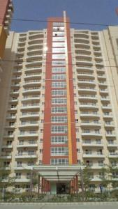 Gallery Cover Image of 1752 Sq.ft 3 BHK Apartment for rent in BPTP The Resort, Sector 75 for 14000