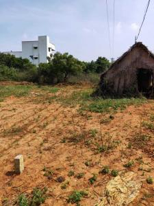 Gallery Cover Image of 1200 Sq.ft Residential Plot for buy in Urapakkam for 3600000