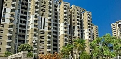 Gallery Cover Image of 1100 Sq.ft 2 BHK Apartment for rent in SRS Royal Hills, Neharpar Faridabad for 10000