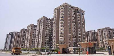 Gallery Cover Image of 1775 Sq.ft 3 BHK Apartment for rent in Amrapali Zodiac, Sector 120 for 16000