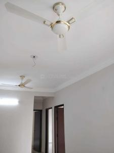 Gallery Cover Image of 855 Sq.ft 2 BHK Apartment for rent in Noida Extension for 7000