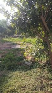 800 Sq.ft Residential Plot for Sale in Vidyamanya Nagar, Bangalore