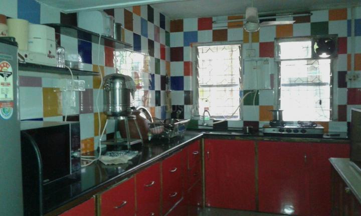 Kitchen Image of PG 4271843 Govandi in Govandi