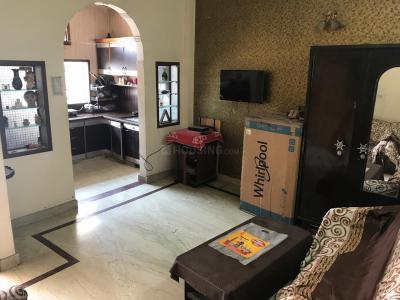 Living Room Image of PG 3806573 Pitampura in Pitampura