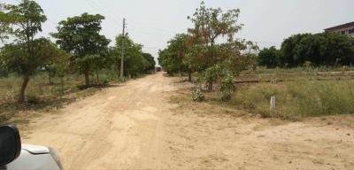 450 Sq.ft Residential Plot for Sale in Badarpur, New Delhi