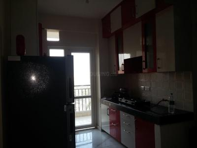 Kitchen Image of Nitin PG in Noida Extension