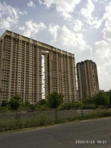 Gallery Cover Image of 1800 Sq.ft 4 BHK Independent Floor for buy in Sector 78 for 6100000