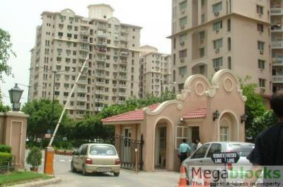 Gallery Cover Image of 1000 Sq.ft 2 BHK Apartment for rent in DLF Princeton Estate, DLF Phase 5 for 33000