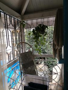 Balcony Image of Jeshtaram Baug in Dadar East