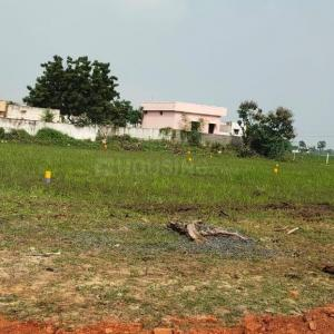 1000 Sq.ft Residential Plot for Sale in Gundlapalem, Nellore