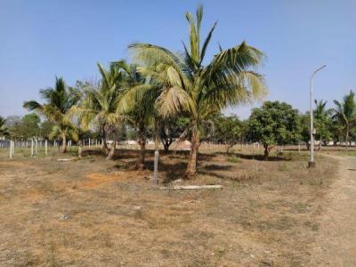 2753 Sq.ft Residential Plot for Sale in Vakas, Thane