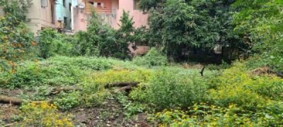 5565 Sq.ft Residential Plot for Sale in Aundh, Pune