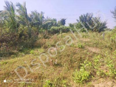 4778 Sq.ft Residential Plot for Sale in Athwa, Surat