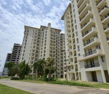 Gallery Cover Image of 1020 Sq.ft 2 BHK Apartment for rent in Sector 65 for 32000