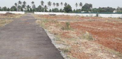 1320 Sq.ft Residential Plot for Sale in Old Town, Anantapur