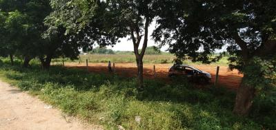 2700 Sq.ft Residential Plot for Sale in Padmarao Nagar, Hyderabad