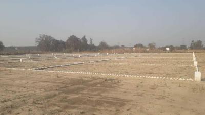 1000 Sq.ft Residential Plot for Sale in Awaleshpur, Varanasi