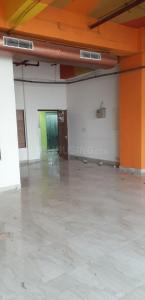 Gallery Cover Image of 2200 Sq.ft 3 BHK Independent Floor for rent in Sector 50 for 32000