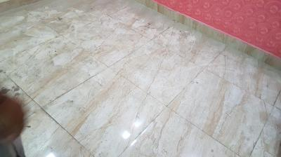 Gallery Cover Image of 450 Sq.ft 2 BHK Independent Floor for rent in Shastri Nagar for 12000