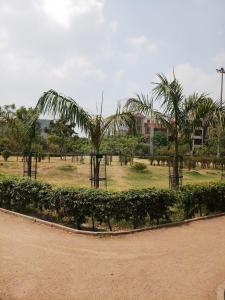 Gallery Cover Image of 240 Sq.ft Residential Plot for buy in Sector 44 for 51000000
