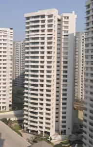 Gallery Cover Image of 1445 Sq.ft 3 BHK Apartment for rent in Powai for 90000