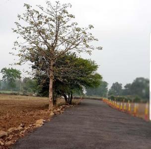 6000 Sq.ft Residential Plot for Sale in Bargi Hills, Jabalpur