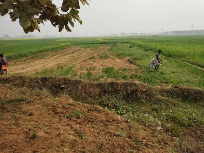 1015 Sq.ft Residential Plot for Sale in Bihta, Patna