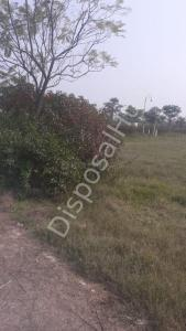 1986 Sq.ft Residential Plot for Sale in Model Town, Ludhiana