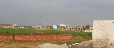 Gallery Cover Image of 1000 Sq.ft Residential Plot for buy in Sector 168 for 500000