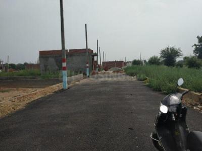 Gallery Cover Image of  Sq.ft Residential Plot for buy in Tilpata Karanwas for 1120000