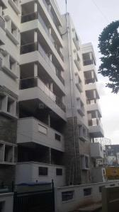 Gallery Cover Image of 1408 Sq.ft 2 BHK Apartment for rent in Jeevanbheemanagar for 45000
