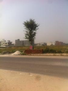 Gallery Cover Image of  Sq.ft Residential Plot for buy in Sector 81 for 11000000