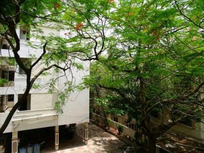 Gallery Cover Image of 1200 Sq.ft 2 BHK Apartment for rent in Madhapur for 29000