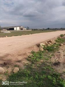 1980 Sq.ft Residential Plot for Sale in Nandigama, Hyderabad