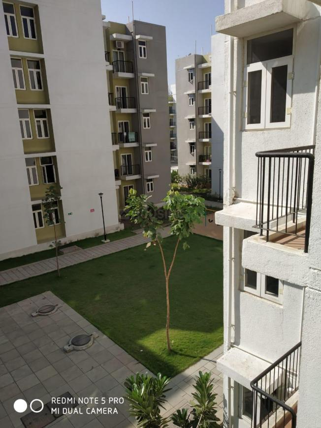 Bedroom Image of 375 Sq.ft 1 RK Apartment for rent in Boisar for 3500