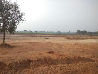 750 Sq.ft Residential Plot for Sale in Ambabai, Jhansi