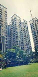 Gallery Cover Image of 1750 Sq.ft 3 BHK Apartment for rent in Tangra for 45000