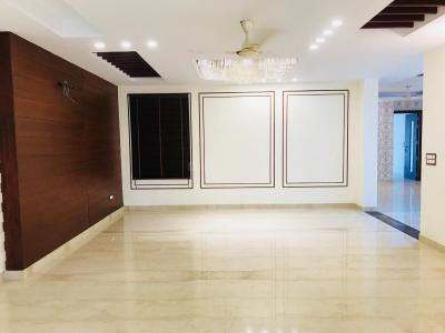 Gallery Cover Image of 4000 Sq.ft 4 BHK Independent Floor for buy in Sector 51 for 16500000