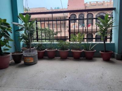 Balcony Image of Lucky Boys PG in Patel Nagar